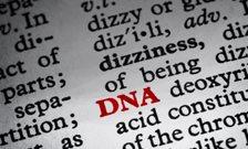 DNA-puff