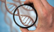 Researchers identify first genetic variant for anorexia nervosa