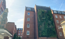 Air-filtering living wall installed at Guy's campus