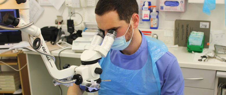 dental-training-endo