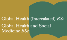 Undergraduate courses in Global Health