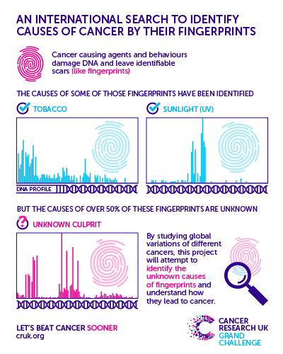 Infographic of international search to identify causes of cancer by their fingerprints