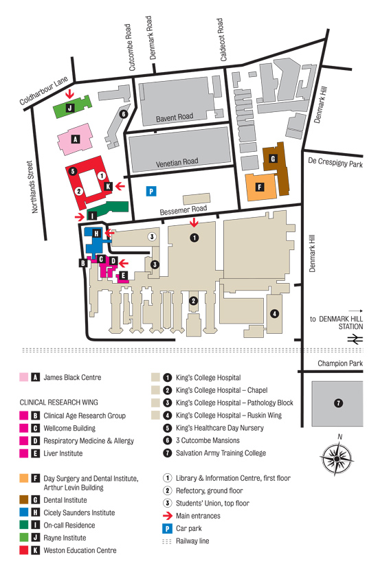Kings College London Denmark Hill Campus Maps