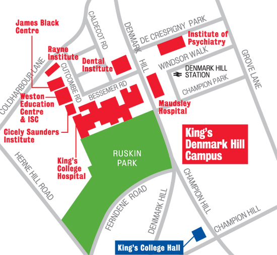 King S College London Campus Maps