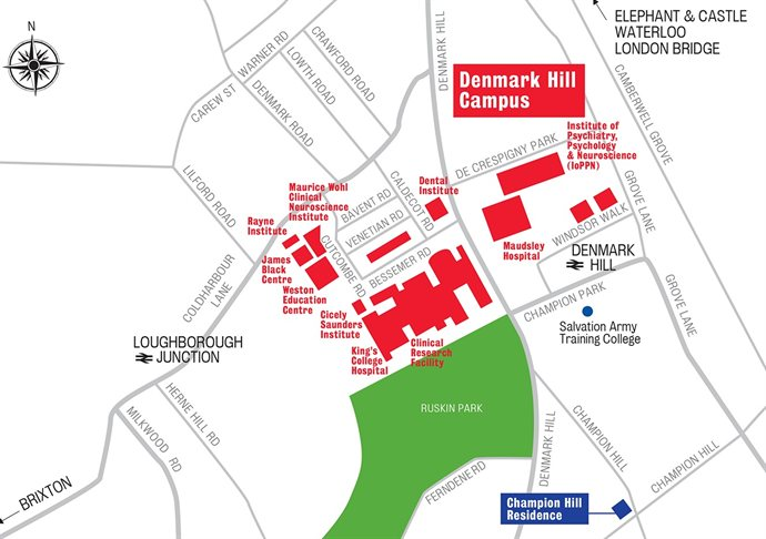 Basic Map Of London.King S College London Contact The Department Of Basic And Clinical