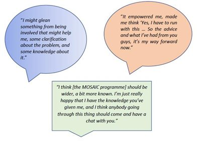 quotes from participants who enrolled in an earlier study