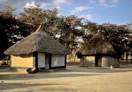rural livelihood essay