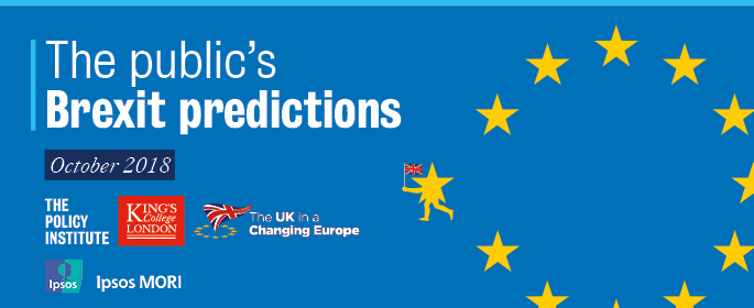 Brexit predictions banner