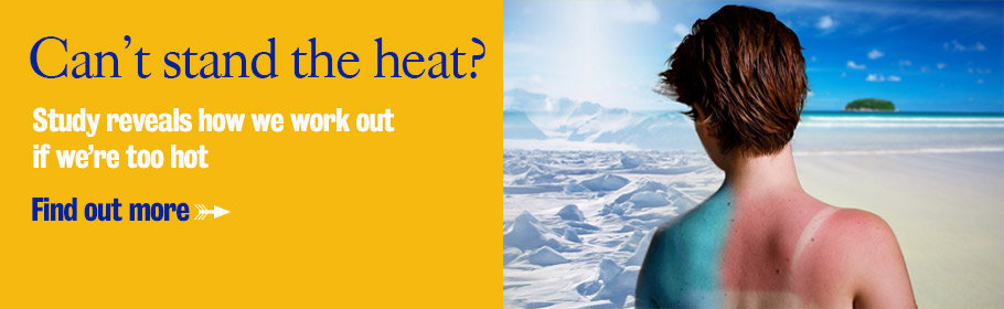 Can't stand the heat? Study reveals how we work out if we're too hot. Find out more.