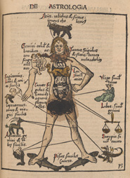 Zodiac man from 'Margarita philosophica' by Gregor Reisch (Freiburg, 1503)