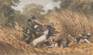 Illustration entitled 'A Melee' depicting men hunting with dogs from 'The rifle and the hound in Ceylon' by Samuel White Baker (1854)