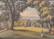 View of the Botanic Gardens St. Vincent. From 'An account of the botanic garden in the Island of St. Vincent ...' by Lansdown Guilding (1825)