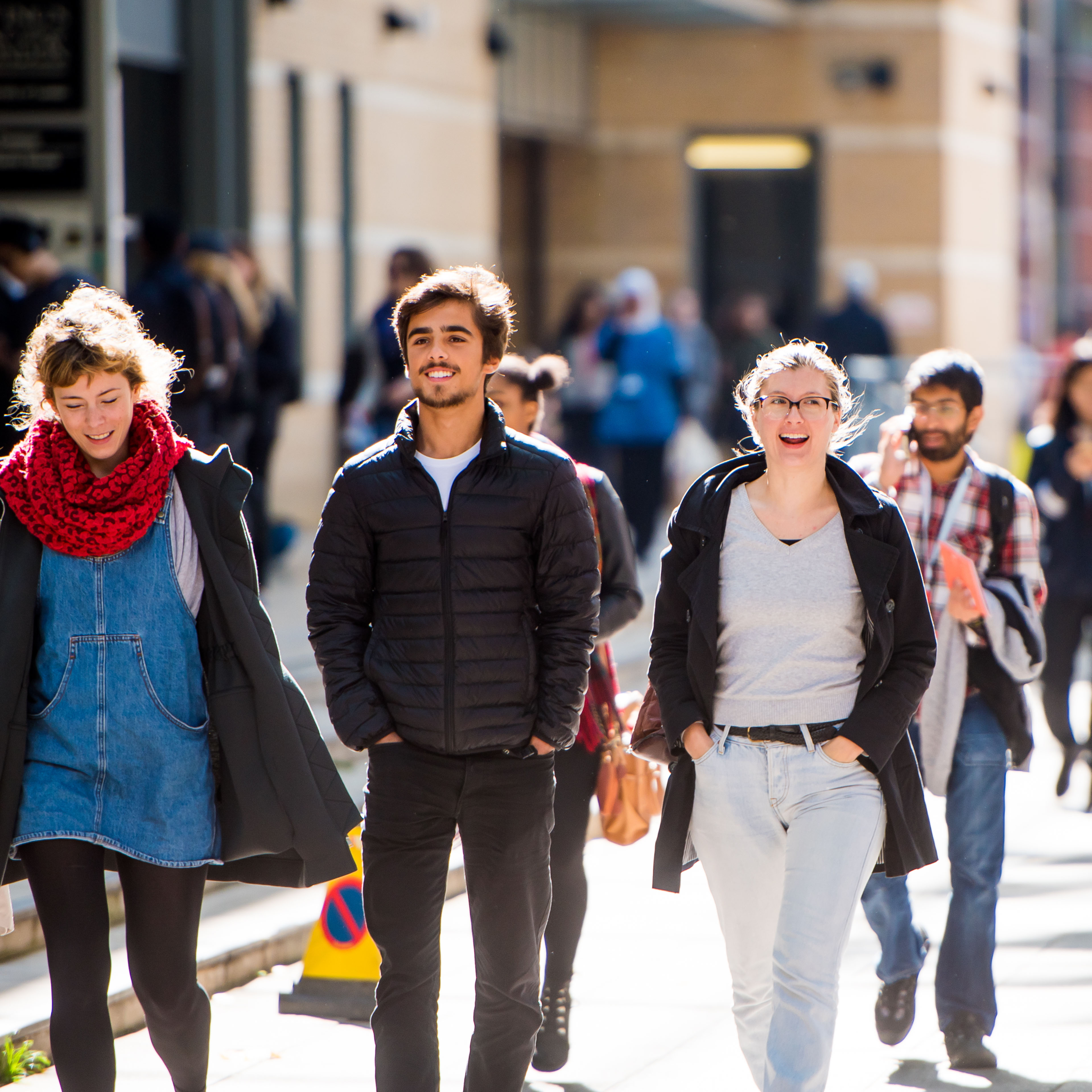 Most popular universities and programmes to study ...