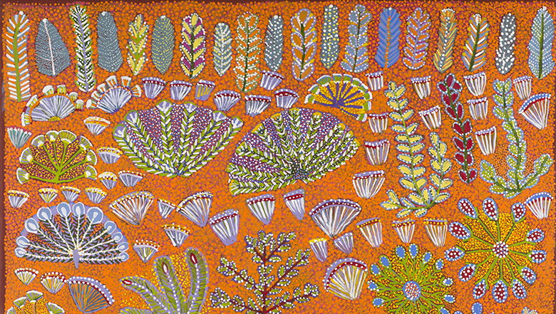 The Art of Healing: Australian Indigenous Bush Medicine