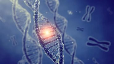 Genetic risk factors of high cholesterol differ between countries