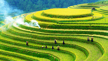 Research Centres and groups