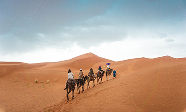 Camels and riders crossing the Sahara Desert