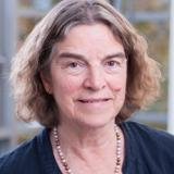 Professor Karen Steel