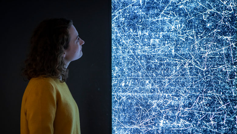 A woman looks at an artwork, with many lines of white light on a dark background representing matter and antimatter