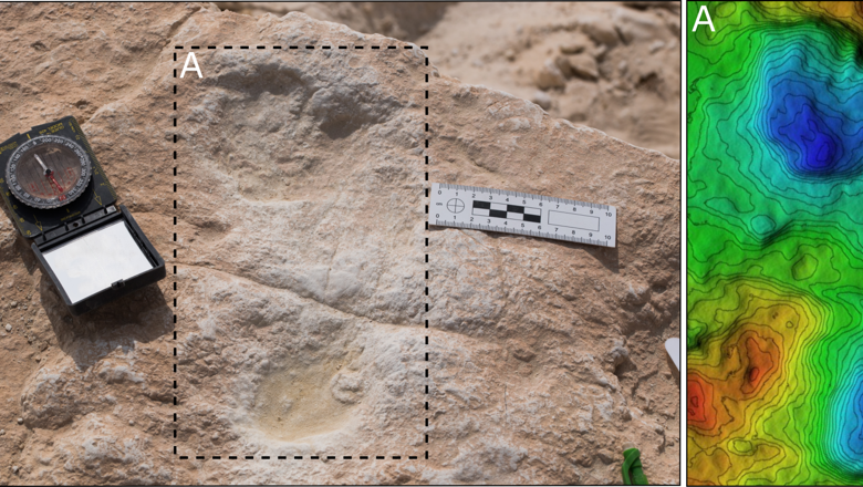 The first human footprint discovered at Alathar and its corresponding digital elevation model (DEM)