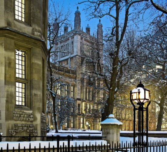 Winter Maughan Night Library (550)